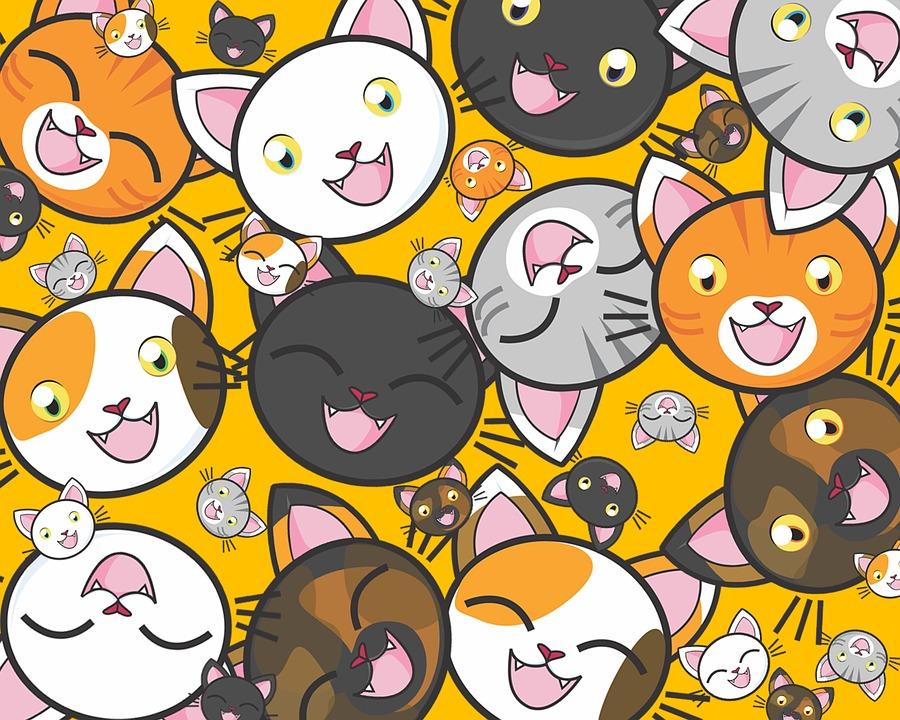 Cats 1722373 960 720